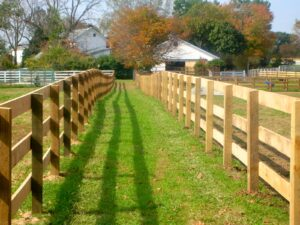 Horse lane with rail fence