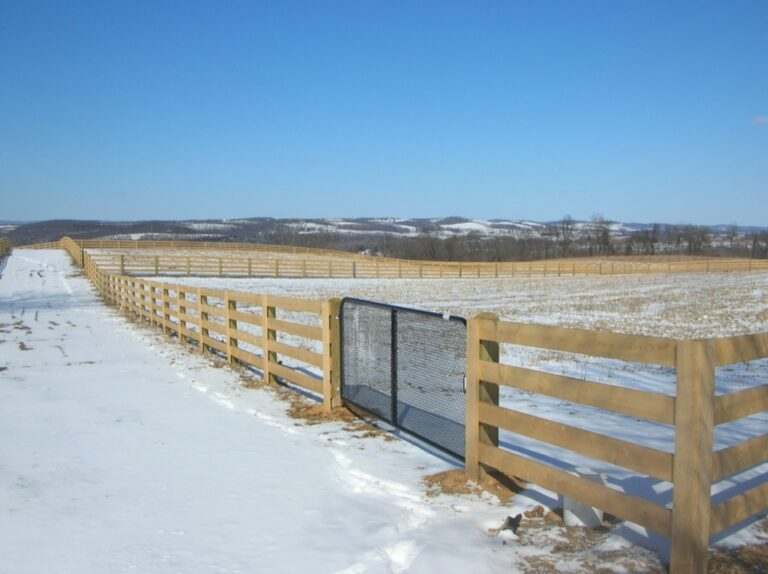 Rail Fence with Metal Gate