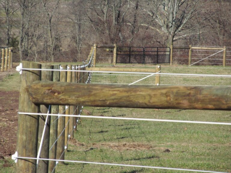 Close up of Horse Fence