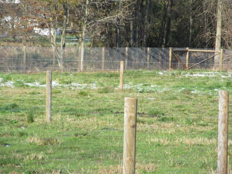 Scotia Acres Lama pen fence