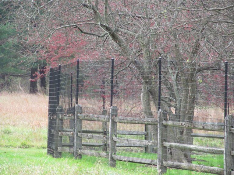 Hight Mesh fence