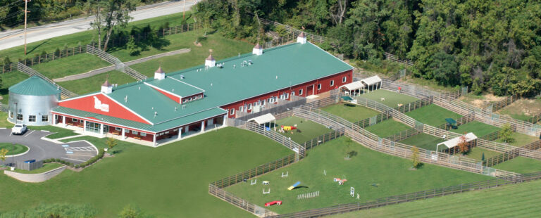 Large Barn with fencing paddocks