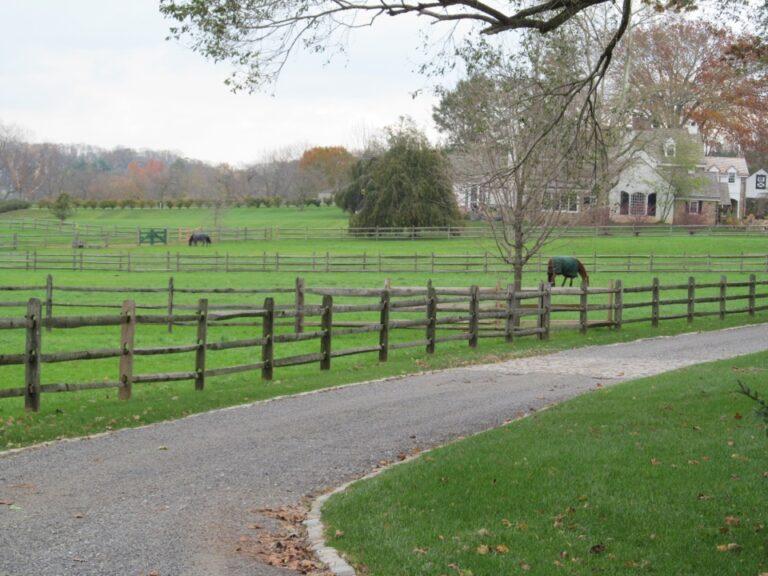 2 horses inside rail fence