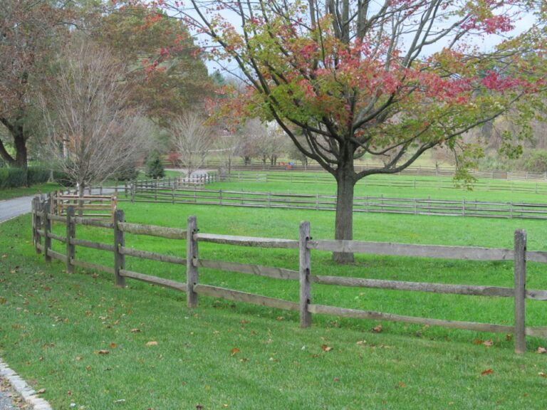 Wooden rail fence with tree